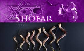 shofares de israel shofar carnero