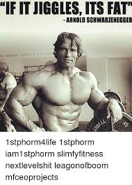 Arnold Schwarzenegger Memes - 25 best memes about arnold schwarzenegger and fat arnold