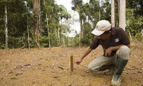soil erosion and degradation threats wwf