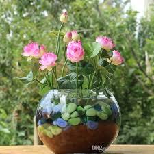 2017 pack bowl lotus seed hydroponic plants aquatic plants flower