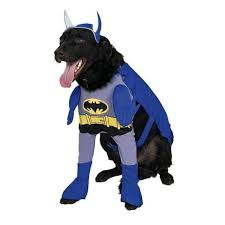 Female Dog Halloween Costumes Clothes Supplies Dogs Society Canine