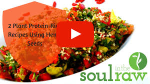 part 2 how to get enough raw vegan protein and absorb it too