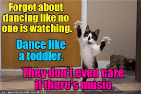 Meme Dance - lolcats dancing lol at funny cat memes funny cat pictures with
