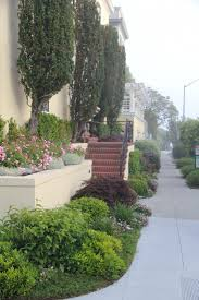 best curb appeal 2017 katharine webster u0027s san francisco street