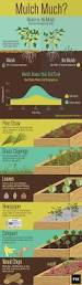 What Type Of Soil For Vegetable Garden - all about mulch pay attention gardens and garden ideas