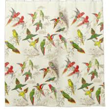 Bird Shower Curtains Birds Shower Curtains Zazzle