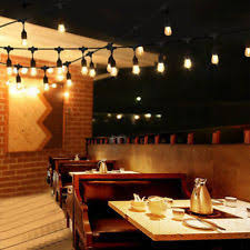 Edison Bulb Patio String Lights 48 Ft String Outdoor String Lights With 24 Vintage Edison Bulbs