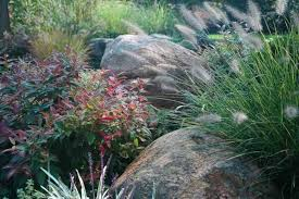 landscaping with boulders provide a spectacular look wearefound