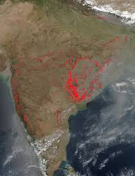 Active Wildfire Map by First Comes Fire Then Comes Crops In India Nasa