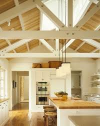 vaulted kitchen ceiling ideas 20 best kitchen ceiling ideas images on arquitetura