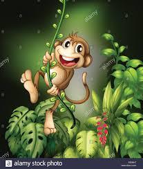 swinging on vine stock photos u0026 swinging on vine stock images alamy