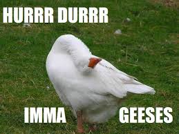 Goose Meme - image 188790 derp know your meme