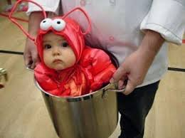 20 cute newborn halloween costumes hative