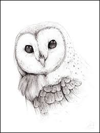 The Owl Barn Gift Collection Barn Owl By The F0x Tattoo Pinterest Owl Barn And Tattoo