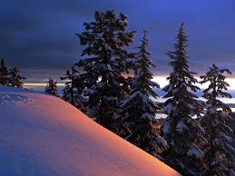wallpaper desktop winter scenes winter reflection clouds trees landscape sky sunset snow wallpaper