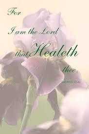 25 healing scriptures ideas bible scriptures
