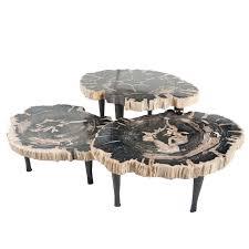bernhardt petrified wood side table impressive latest petrified wood coffee table interiorvues in