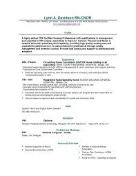 Sle Of Expense Sheet by Exle Of A Nursing Resume Sle Nursing Curriculum Vitae