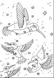 unbelievable realistic flower coloring pages hummingbirds with