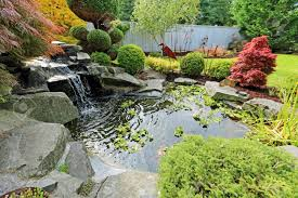 tropical landscape design on backyard view of small pond trimmed