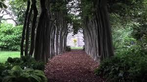 Louisville Botanical Gardens by Lookin U0027 At Louisville Video Short Yew Dell Gardens Youtube