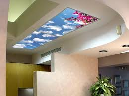 Decorative Ceiling Light Panels Sky Scapes Skyscapes Decorative Fluorescent Light Diffusers