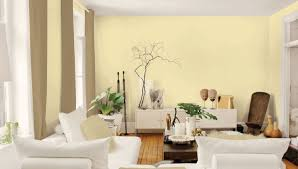 Popular Paint Colors For Living Room 2017 by Living Room Charming Living Room Color Palette Ideas Attractive