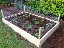 raised bed vegetable garden on a slope impressive raised bed
