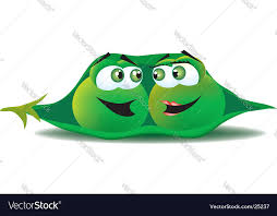 2 peas in a pod two peas in a pod royalty free vector image vectorstock