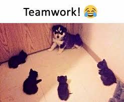 Teamwork Memes - dopl3r com memes teamwork e