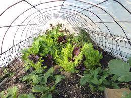 garden design garden design with short gardening tips on winter