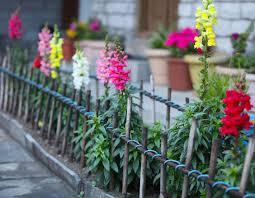 metal flower garden stakes fence beautiful garden fence metal backyard privacy screens