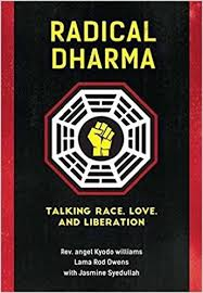 Owens Comfort Systems Radical Dharma Talking Race Love And Liberation Rev Angel