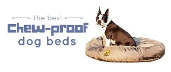 tough dog beds 4 best chew proof dog beds for rough chewers