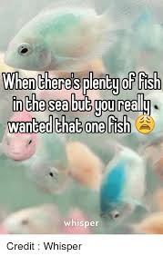 Fish In The Sea Meme - when theres plenty of fish inthe sea but you really wanted that one