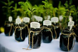 plant wedding favors diy wedding plant favors are for a green wedding