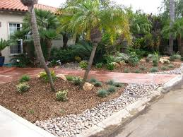 tips for desert landscape front yard designs ideas and decor