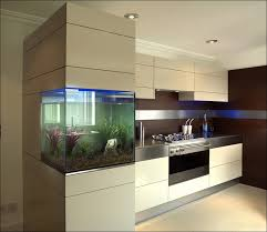 Acrylic Cabinet Doors Kitchen Gloss Kitchen Cabinet Doors High Gloss Kitchens Acrylic