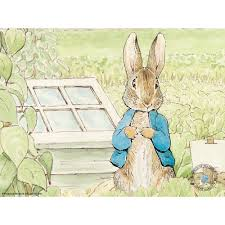 rabbit library 65 on beatrix potter the complete rabbit library 23