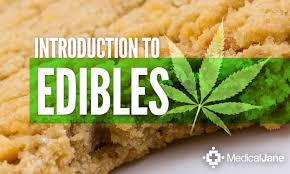 edibles delivery 5280 courier delivery service in dever co edibles 5280 courier