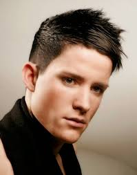 Mens Hairstyles Spiked by Short Punk Hairstyles Men Male Punk Hairstyle With Short Sides And