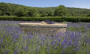 environmentally friendly willow coffins wicker willow coffins