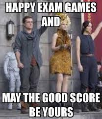 Funny Hunger Games Memes - hunger games funny meme22