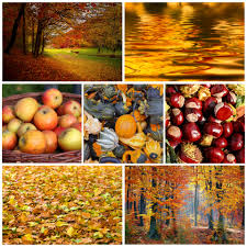 Autumn Colors Colors Images Public Domain Pictures Page 1