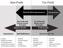social entrepreneurship definition and boundaries tim review