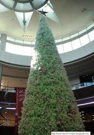 the christmas tree and crib at st marys dubai simple dreams