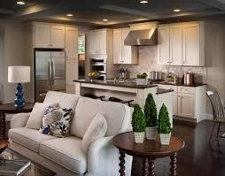 cucine e soggiorno cucina a vista idee per arredare cucina e soggiorno
