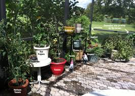 Patio Container Garden Ideas 31 Days To An Organized Home Day 7 Organizing The Patio