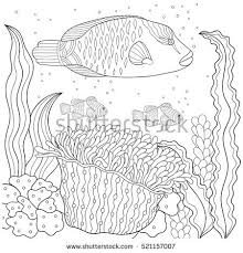 hermit crab coloring book pages sea stock vector 471665000