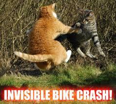 Invisible Cat Memes - invisible bike crash cat meme cat planet cat planet